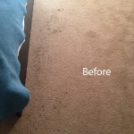 Bedroom-Carpet-Cleaning-Pleasanton-A