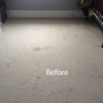 Bedroom-Wall-to-Wall-Carpet-Cleaning-Pleasanton-A