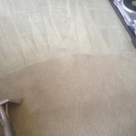 Carpet-Cleaning-Pleasanton