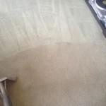 Carpet-Cleaning-Pleasanton