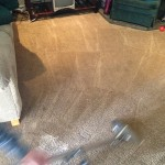 Dirty-Carpet-Cleaned-Pleasanton