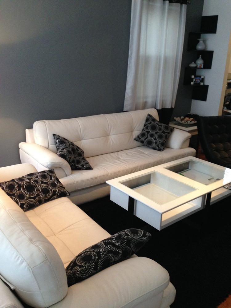 Professional Leather Sofa Cleaners TheSofa