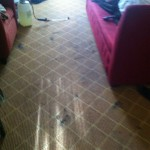 Pleasanton-Carpet-Clean-before