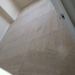 Pleasanton-Carpet-Clean-room