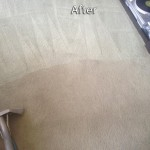 Pleasanton-Carpet-Cleaning-Company