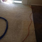 Pleasanton-Traffic-Area-carpet-cleaners