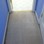Pleasanton-Vomit-after-carpet