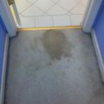 Pleasanton-Vomit-before-carpet