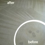 Pleasanton-Wine-Stain-Carpet-Cleaning