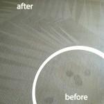 Pleasanton-Wine-Stain-Carpet-Cleaning