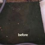 Pleasanton-before-carpet