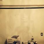 Pleasanton-mold-damage